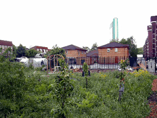 Pepys Community Garden